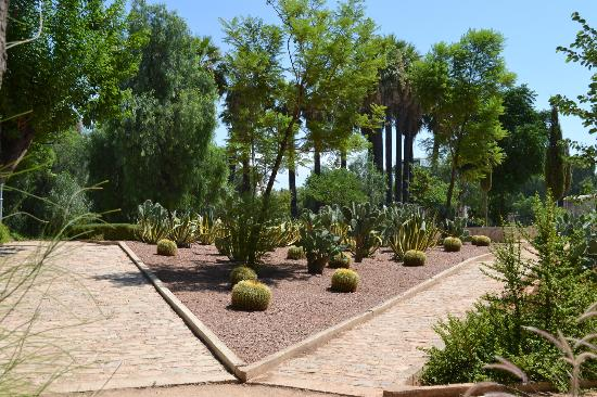 jardin-jnan-sbile-2